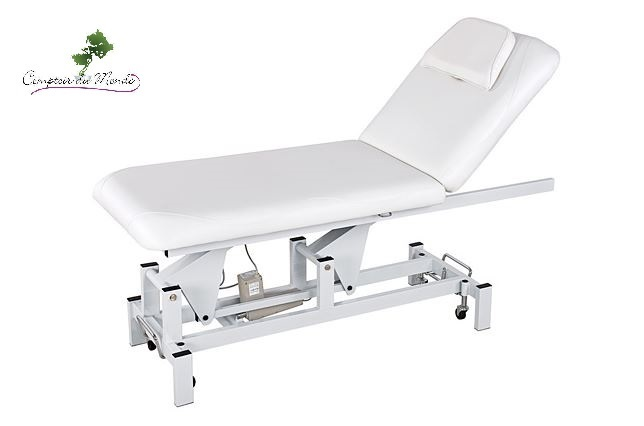table de massage electrique 3 moteurs startmedica institut spa pro soins corps esthetique. Black Bedroom Furniture Sets. Home Design Ideas